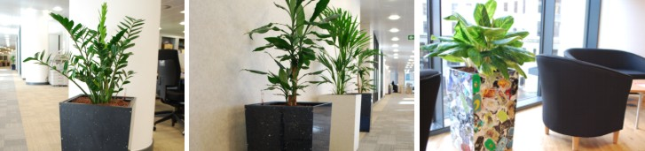 plant displays made from recycled plastic